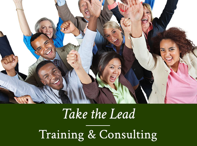home-boxes2-take-the-lead-training-consulting